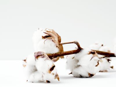 Hoe een katoenfabrikant 10% waste reduceerde